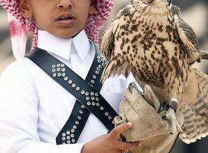 Cum e să trăiești și să mergi la școală în Qatar - Partea I - RevistaMargot.ro
