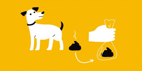 Grow Up Romania Strânge după câinele tău pentru ca cei mici să nu aibă de suferit! - RevistaMargot.ro
