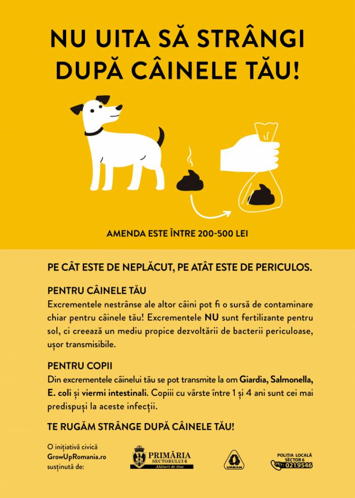 Grow Up Romania: Strânge după câinele tău pentru ca cei mici să nu aibă de suferit! - RevistaMargot.ro