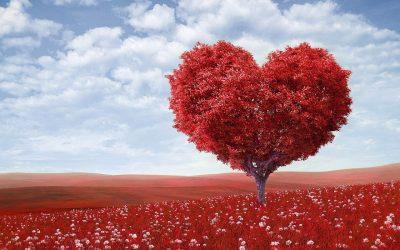 Valentine's Day Quiz: Părinți sau îndrăgostiți? - RevistaMargot.ro