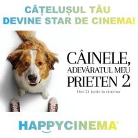 Catelusul tau devine star de cinema
